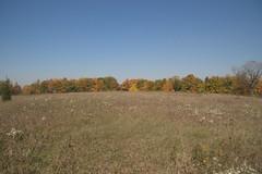 Maybury-State-Park-Field_Northville-MI_10-07-2011k (Count_Strad) Tags: mayburystatepark maybury state park northville michigan mi fallcolor field