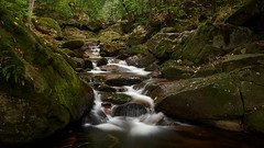 Wildbach Ilse (Mich_Lu) Tags: wald landschaft wasserfall harz ilse ilsetal bach wildbach natur