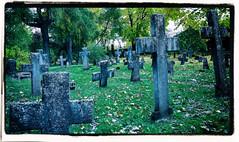 A Graveyard blues (BigWhitePelican) Tags: tallinn graveyard graves silent autumn dark estonia canoneos70d adobelightroom6 niktools 2018 october