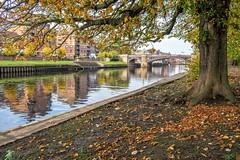 Autumn framed... (Kerriemeister) Tags: