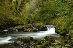 Watersmeet, North Devon (andy_weller) Tags: river xt2 fujifilm nationaltrust exmoor northdevon watersmeet