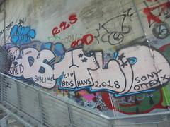 110 (en-ri) Tags: bds hld text bored sublime hands csn rosa azzurro nero sony ottexx 2018 stelline torino wall muro graffiti writing parco dora