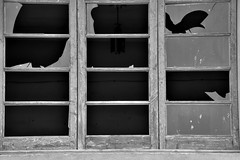 Broken (jaume zamorano) Tags: blackandwhite blancoynegro blackwhite blackandwhitephotography blackandwhitephoto bw broken d5500 monochrome monocromo nikon noiretblanc nikonistas pov street streetphotography streetphoto streetphotoblackandwhite streetphotograph urban urbana window