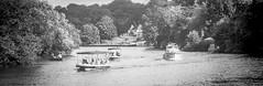 2018-08-19 & 20 Agilux Shillingford & Oxford (1 of 26) (Pete K) Tags: agilux agimatic shillingford boat boats bridge hotel river thames