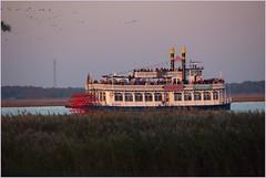 Kraniche gucken vom Schiff (gynti_46) Tags: mvp ostsee vogelzug kraniche raddampfer