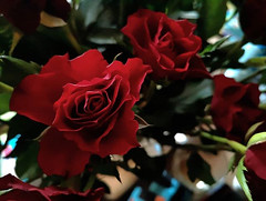 By love #love #TFLers #tweegram #photooftheday #20likes #amazing #smile #follow4follow #like4like... (omegaz63400) Tags: ifttt 500px