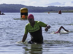"Cairns Crocs Lake Tinaroo Triathlon-Swim Leg • <a style=""font-size:0.8em;"" href=""http://www.flickr.com/photos/146187037@N03/43774835190/"" target=""_blank"">View on Flickr</a>"