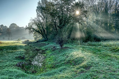 Foggy Morning Sun (enneafive) Tags: sun light ray burst shadows green creek sky fog mist fujifilm xt2 affinityphoto overbroek gelinden sinttruiden belgium meadow hdr