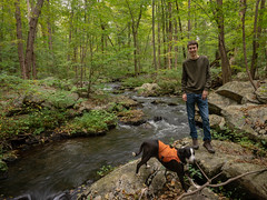 Jack and Kate on the Beaver Brook at Wildcat Ridge (Dave Landry) Tags: northamerica flickr places newjersey unitedstates rockawaytownship fall wildcatridge morriscounty america us usa unitedstatesofamerica