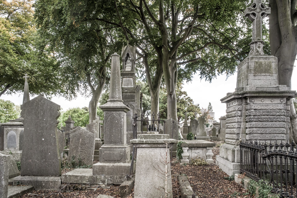 SEPTEMBER 2018 VISIT TO GLASNEVIN CEMETERY [ I USED A BATIS 25mm LENS AND I EXPERIMENTED WITH CAPTURE ONE]-144827
