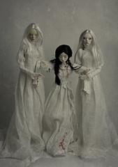 weakness (dolls of milena) Tags: bjd resin doll popovy sisters little owl cherry peewit portrait