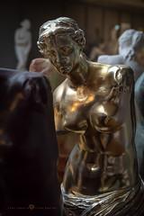 La Chica de Oro (Juan Ig. Llana) Tags: bilbao bizkaia vizcaya españa es museodereproducciones venusdemilo museo venus arte escultura pintura copia reproducción busto oro dorado brillo reflejo mujer