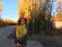 solitude Street (branbeckman) Tags: beckylynch wwesuperstarsdoll offroad dollphotography jeep solitude alaska
