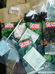 September 30th, 2018 Seed donations (karenblakeman) Tags: readingtownmeal reading uk 2018 september food localcommunities seeds readingfoodgrowingnetwork rfgn 2018pad berkshire