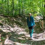 Haut-Koenigsbourg/Alsace 2018 thumbnail