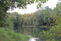 IMG_6227 (nic0v0dka) Tags: maraispoitevin deuxsèvres nouvelleaquitaine river riverside rivière green vert water eau fleuve poitoucharentes