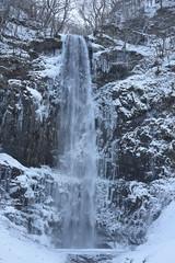 Waterfall (No Photo No Life !!) Tags: waterfall winter nature naturelovers naturephotography naturephoto natureshot nikon nikond810 nikonphotography water cold beautiful japan snow tree longtimeexposure slowshutterspeed slowshutter