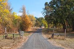 Autumn at Dorris Ranch (JSB PHOTOGRAPHS) Tags: dsc0020 dorrisranch nikon springfield autumn road fence trees d90