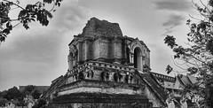 Wat Chedi Luang (Thomas Mülchi) Tags: chiangmai chiangmaiprovince thailand 2018 panoramic panorama architecture bw monochrome sunny buddhism buddhisttemple temple elephants changwatchiangmai th
