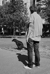Poop (hayavuk) Tags: place serbia belgrade exterior path street moment autumn afternoon people middleage woman animal dog pet action pooping photography streetphotography