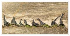 ABC_3049 (Lynne J Photography) Tags: spittalpoint rocks seaside beach water absract curves sunrise longexposure textures colors northumberland