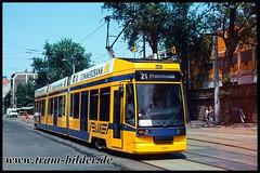 1117-1996-06-08-1-Kurt-Schumacher-Straße (steffenhege) Tags: leipzig lvb strasenbahn streetcar tram tramway niederflurwagen duewag ngt8 1117