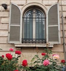 Roma (Ramona Anitsuga) Tags: ventana window roma rome italia italy europa europe travel travelphotography roses rosas flores flowers spring primavera
