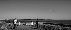 plane spotting (wallli77jp) Tags: tamagawa outdoor water river pentax k5 limited 多摩川 アウトドア planespotting haneda airport 羽田空港 プレーンスポッティング