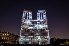 Dame de coeur (Marco Dioguardi) Tags: dame de coeur damedecoeur notredame paris france colors lights night nightphotography notre