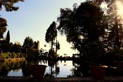 Villa d'Este (rizzageorge) Tags: 500px villa este roma tivoli fiuggi italia romantic sun sky sunset lake pool shadow italy rome lazio panoramic view trees foutain