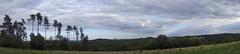Panorama. (sabinebeu) Tags: sabinebeu panorama bäume arbres wald forest trees landscape landschaft frankreich france périgord