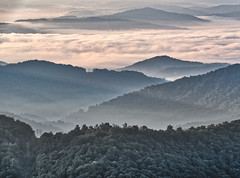Misty Mountain Morning (Bob.Z) Tags: balsamgrove poundingmilloverlook blueridgeparkway northcarolina unitedstates usa nc canton transylvaniacounty sunrise forest mountains clouds mist morning valleys ridges peaks