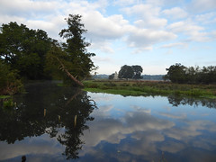Newark Priory (Gilder Kate) Tags: ripley surrey weynavigation riverwey newarkpriory reflections reflection newarklock panasoniclumixdmctz70 panasoniclumix panasonic lumix dmctz70 tz70