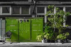 (skp-mm) Tags: pflanzen plants garbage symbiose 2colors old voltage green industrie