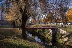braga (Fernando Stankuns) Tags: fernando stankuns braga portugal minho ecovia rio river cyclo foot lane este