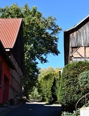 (:Linda:) Tags: germany thuringia village bürden halftimbered barn oaktree brick