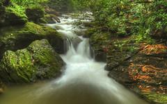 The Glen is Roaring! [Explored] (Radical Retinoscopy) Tags: waterfall tucquanglen rapids longexposure smooth water vivid pa pennsylvania lancaster lancastercounty canont6s canon1740 polarizer
