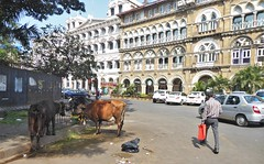 is-mah-2 mumbai-horniman circle (8) (jbeaulieu) Tags: inde sud maharashtra mumbai horniman circle quartier