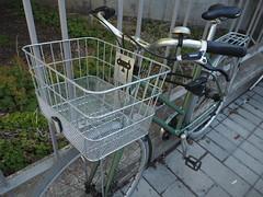 Bicicleta a la Stockholms universitet - Frescati (tgrauros) Tags: frescati stockholmuniversity stockholmuniversitylibrary stockholmsuniversitet bikes biciclette fiets fahrrad vélo bicycle bicicleta bicicletta