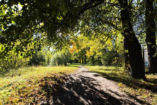 Sunny path.
