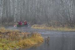 canoeing in Keyritynjoki (VisitLakeland) Tags: finland lakeland aamu autumn canoe joki lake luonto maisema meloa melonta misty morning nature outdoor river scenery sumu syksy virta