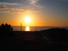 shining pampus grass (murozo) Tags: ground sky field pampus grass sun sunset cloud autumn sea steel tower nikaho akita japan tree 空 雲 太陽 夕日 ススキ 草 秋 海 鉄塔 にかほ 秋田 日本 木