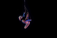 Circus (Zoom in please) : acrobat in action (3/5) (Franck Zumella) Tags: cirque circus spectacle acrobat acrobate dark darkness dim light woman rome roma artiste vol fly artistique grace aerialist 2470 tamron f28 28 서커스 马戏团