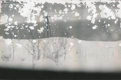 19790100_IMG_0001-trm (NAMARA EXPRESS) Tags: hokkaido exhibition photostreet photoexhibition photograph print paper memorial old typhoons storm surge monochrome blackandwhite japan film trix leitz minolta cl 40mm f2 canon canoscan 9000f scanner scan namaraexp