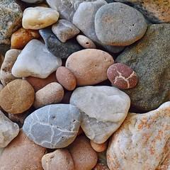51364593 (aniaerm) Tags: sea coastalfinds sand