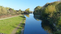 20181022 Wlk frm Staveley_0002 View West along Chesterfield Canal from Mill Green Bridge~Staveley (paul_slp5252) Tags: derbyshire northeastderbyshire chesterfieldcanal cuckooway frommillgreenbridge staveley millgreenbridge vieweastalongchesterfieldcanal swans