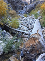 IMG_2555 (August Benjamin) Tags: provocanyon lostcreekfalls bridalveilfalls provorivertrail provoriver utah mountains hiking autumn fall fallcolors creek waterfall cascademountain