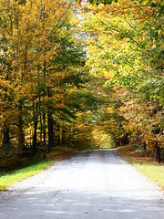 Country Road in Fall (pegase1972) Tags: quebec qc québec canada fall easterntownships estrie foliage nature road countryroad licensed dreamstime shutter shutterstock adobe fotolia adobestock
