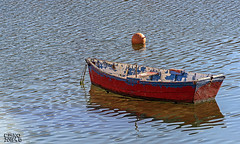 FRR2014_Burela. Puerto (F.Racero) Tags: burela lugo españa