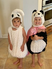 Madeleine and Sawyer's costumes for Halloween 2018: A ghost and panda (dionhinchcliffe) Tags: moblog iphonepics